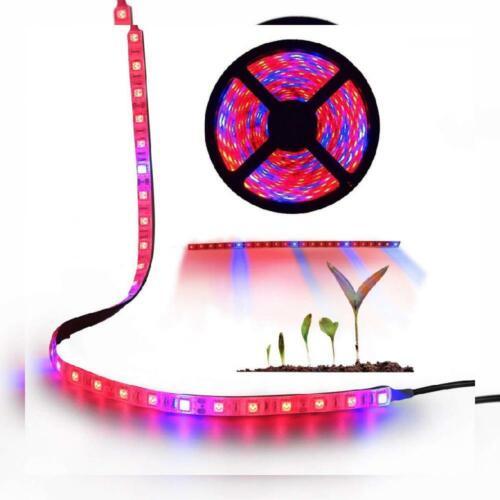Greenhouse Hydroponics Flower Plant Grow Light 5050 SMD LED Strip Lights Lamp 5M