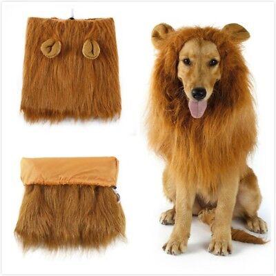 Pet Kostüm Hund Lion Perücken M?hne Haar Schal Tuch für Party Halloween GE
