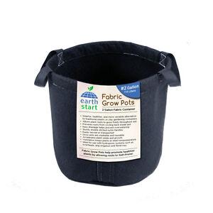 2 gallon plant pots ebay. Black Bedroom Furniture Sets. Home Design Ideas