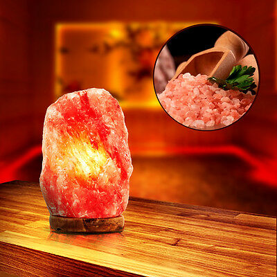 Himalayan Natural Ionic Rock Crystal Salt Night Lamp Air Purifier Dimmer 110V US - Himalayan Salt Rocks