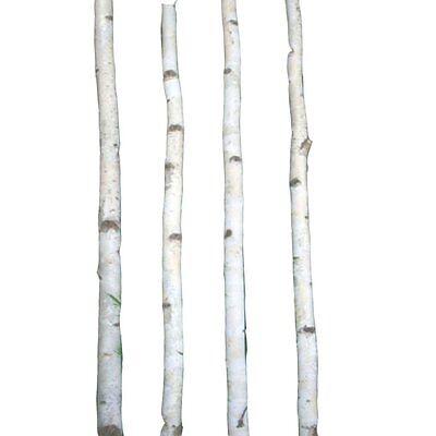 4 Thin White Birch Poles 8'