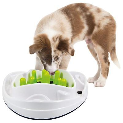 All For Paws AFP Interactive Dog Puppy Food Treat Maze Toy Game 28x28x8cm