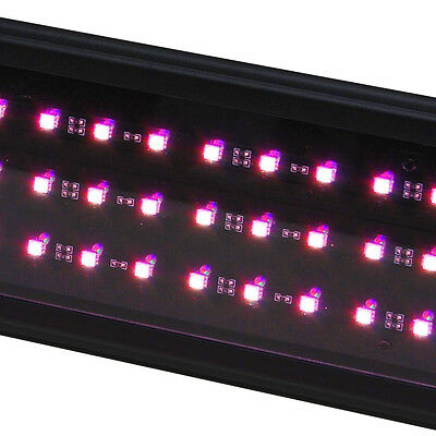 - LED 24 Plant Pink Freshwater Aquarium Grow Light Beamswork 72x Chip Asian Red