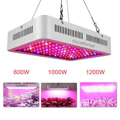 Led Grow Lights Plants - Full Spectrum LED Grow Light 300W 600W 1000W 1200W   LED Lamp for Indoor Plants