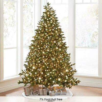 Hammacher World's Best Prelit Noble Fir 9.5' Slim LED Clear Light Christmas Tree