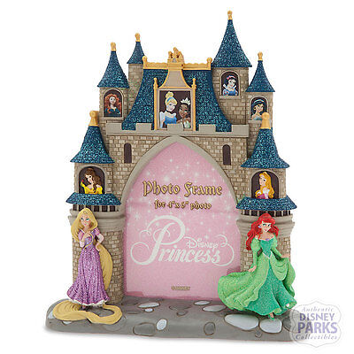 Disney Parks Princess Castle Photo Frame Picture Belle Ariel Cinderella Rapunzel