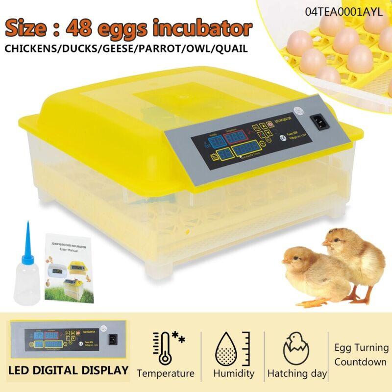 48 Digital Clear Egg Incubator Hatcher Automatic Egg Turning Temperature Control