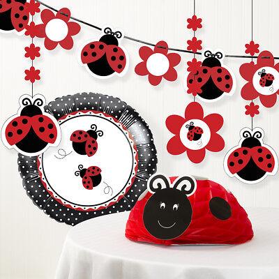 Ladybug Fancy Birthday Party Decorations Kit - Ladybug Birthday