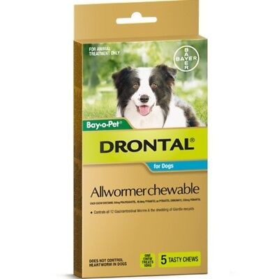 (Drontal Allwormer Chewables for Dogs 10kg 5 chews Dog Dogs Pet Pets)