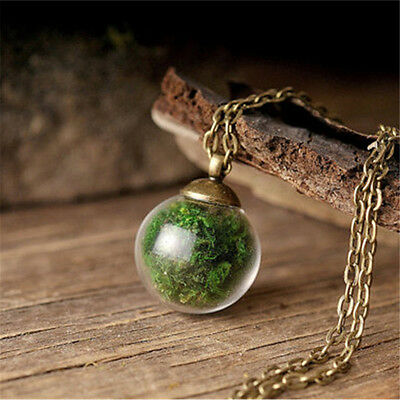 Nature Real Moss Plant Mini Terrarium Glass Ball Retro Pendant Wishing Necklace - Wishing Plant