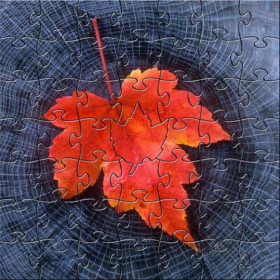 Zen Teaser Puzzle - 50 Pieces - Circles of Life](50 Piece Puzzles)