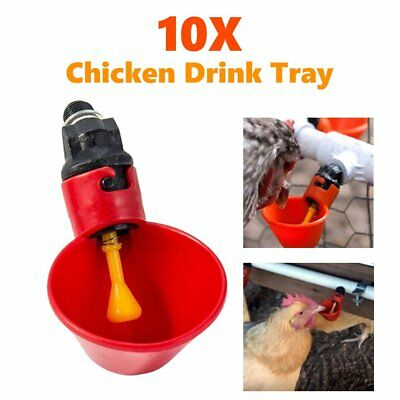 10X Automatic Cups Chicken Waterer Poultry Chook BIRD WATER FEEDER Drinker NEW