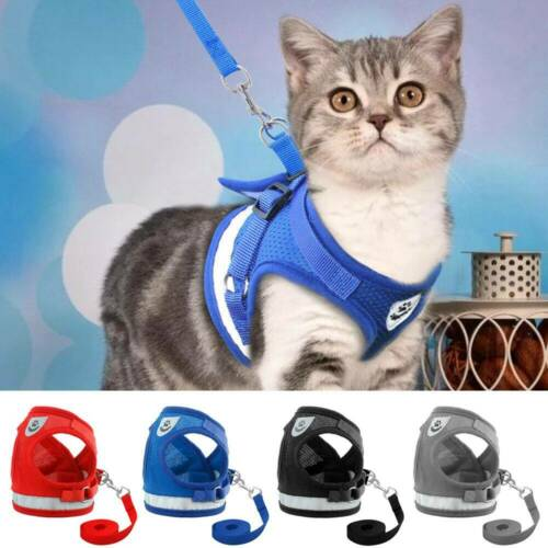 Small Dog Cat Harness and Walking Leads Set Pet Puppy Breath