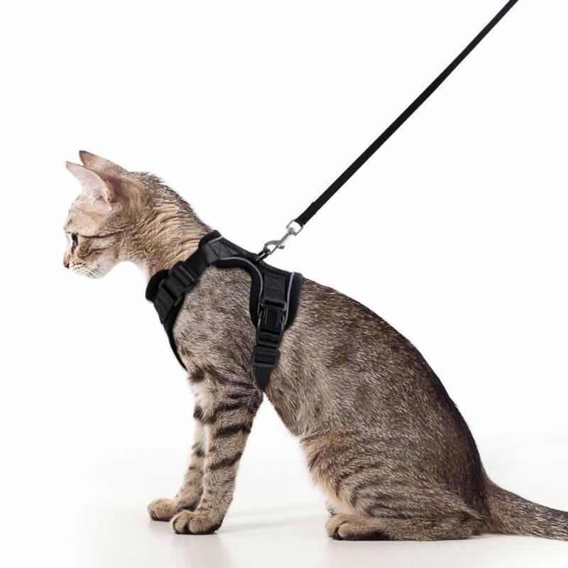 Rabbitgoo Cat Harness Reflective Walking Jacket Adjustable with 59 Inches Leash