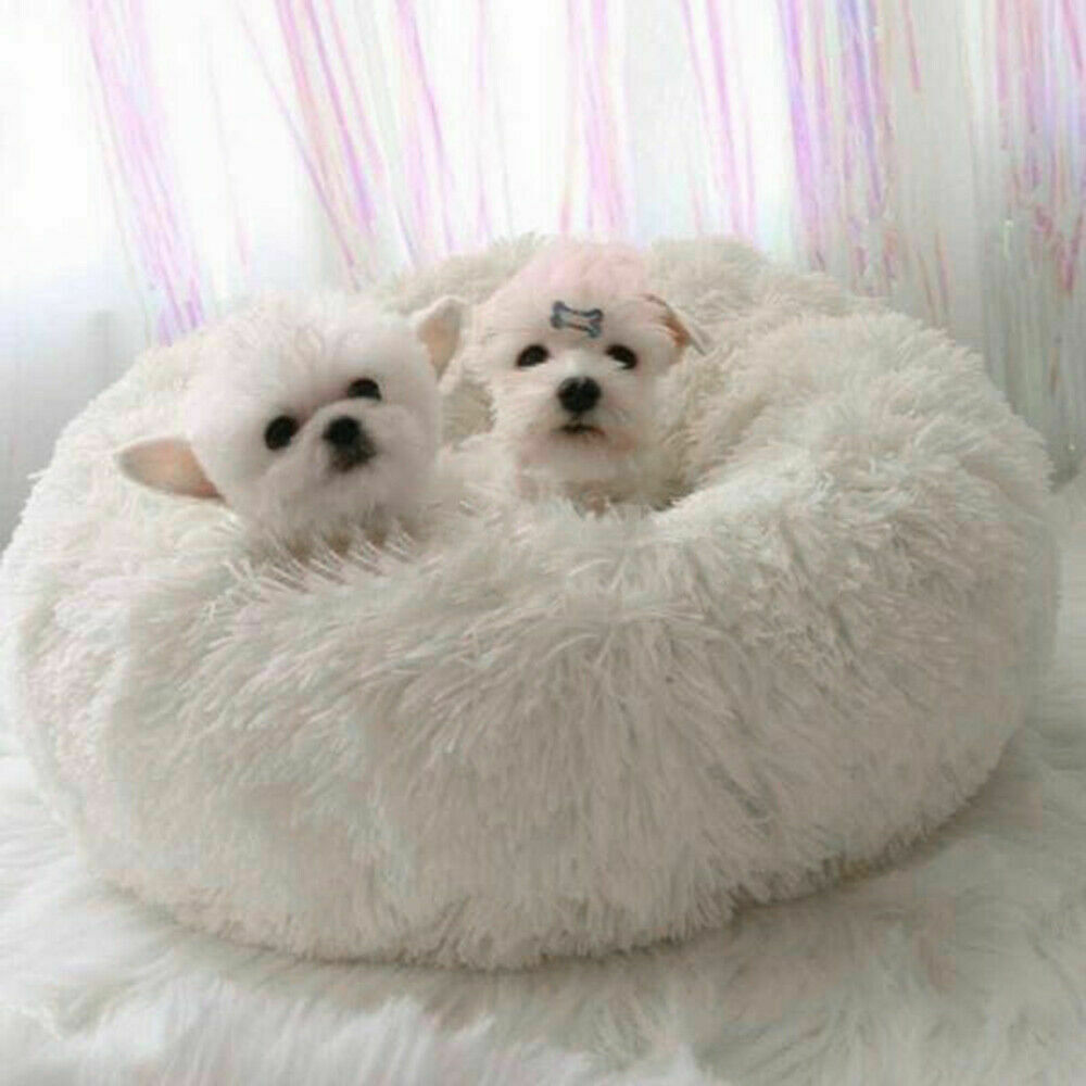 Furniture - New 2020 Calming Dog Bed
