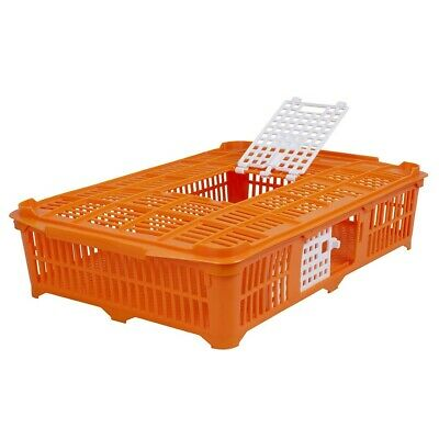 Pigeon / Quail Transport Crate 67 x 40 x 13