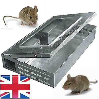 mouse trap humane live capture mice catch pest control metal 1pc catcher