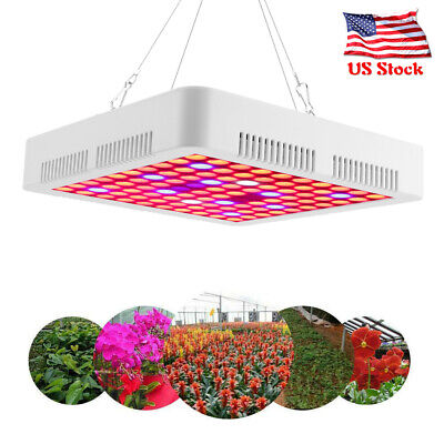 5000w Led Grow Light Full Spectrum Hydroponic Greenhouse Plant Flower Bloom Ip65