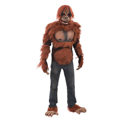 Deluxe Orangutan Ape Monkey Adult Halloween Costume Mask Gloves Chest & Feet