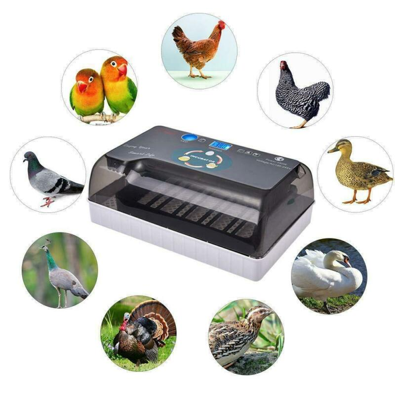 12Eggs Fully Automatic Incubator Digital Poultry Hatcher Auto Turning LED Lamp