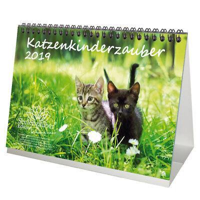 Katzenkinderzauber · DIN A5 · Premium Tischkalender 2019 · Katzenkinder · Katzen (Tischkalender Katzen)