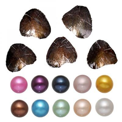 China Pearl Sweet - 10Pcs Bulk Fresh Akoya Oysters with Large Natural 7-8mm Wish Pearl US Stock