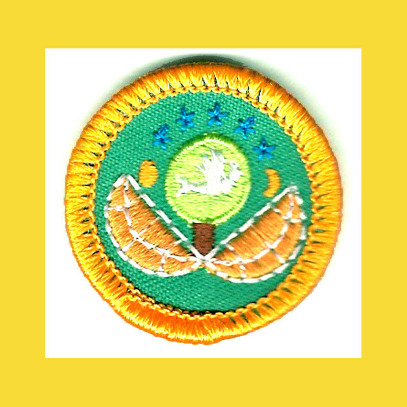 DABBLER Junior Girl Scout Yellow Worlds to Explore Out Doors Badge Multi=1 Ship