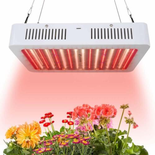 Carambola  8000W LED Grow Light Full Spectrum RED LED 576 LEDs Veg Flower Bloom