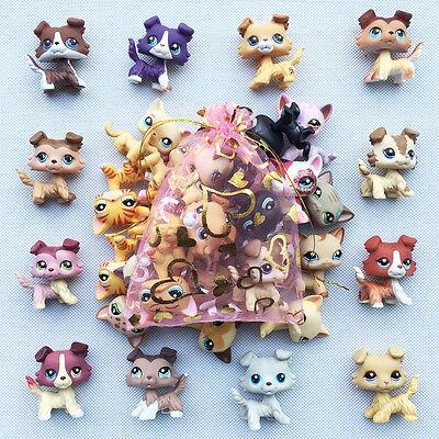 5pcs lot Random LPS Collie Dog+shorthair cat Littlest Pet Shop toy Surprise Gift