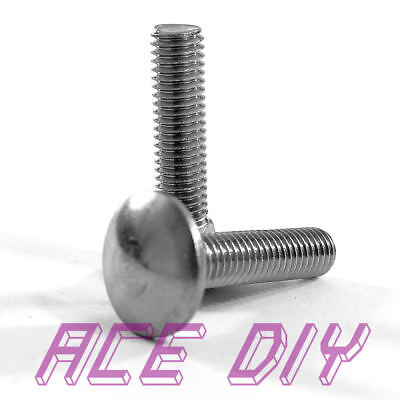 Carriage Bolts Square Cup Dome Coach Screw A2 Stainless Steel M5 M6 M8 M10 M12