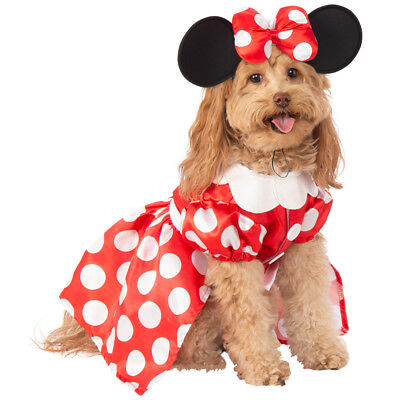 Minnie Mouse Pet Halloween (Hunde Kostüm Minnie Mouse)