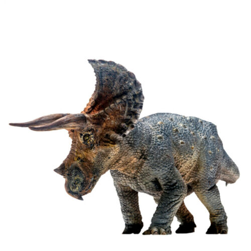 PNSO Triceratops Figure Scientific Realistic Dinosaur Model Toy Collector Gift