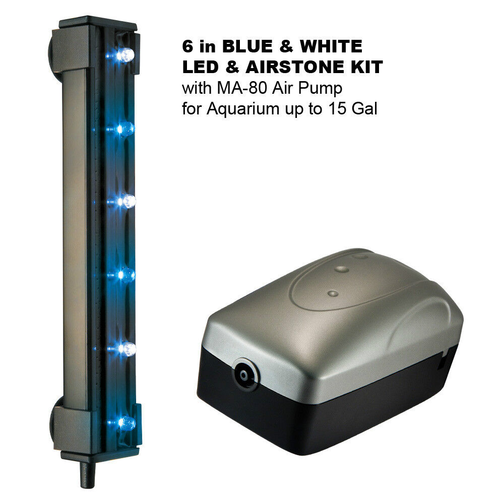 """6"""" BLUE & WHITE LED & AIRSTONE KIT with MA-80 Air Pump for Aquarium up to 15 Gal"""
