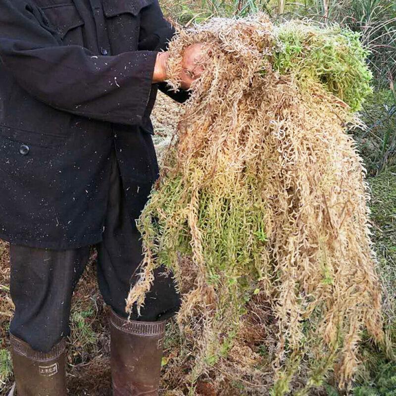 6/12L Sphagnum Moss  New Zealand Orchid Plant Long Fiber Spagmoss Besgrow Brick