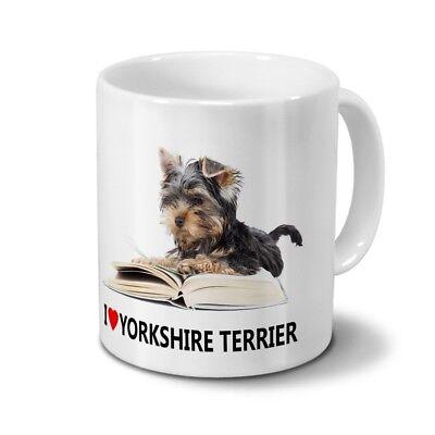 Hunderasse Yorkshire Terrier ()