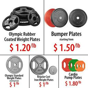 Olympic Rubber Bumper Standard Regular Cast Iron Weight Plates