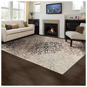 NEW Superior Elegant Leigh Collection Area Rug, 5' x 8' Condition: New
