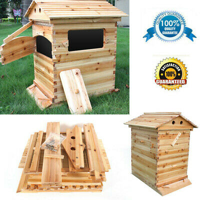 Bee Hive Wooden Deluxe Starter Kit Chinese Fir Hive Brood House For Honey Frames