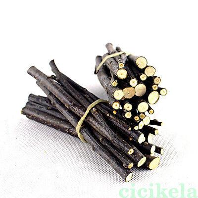 50g Apple Wood Chew Stick Twig for Small Pet Rabbit Rat Hamster Chinchilla Toy