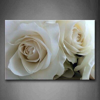 Framed Huge Roses Pure White Wall Art Canvas Print Artwork Flower Decor Picture