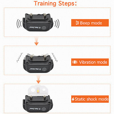 Купить Petrainer PET998DB - Petrainer Waterproof Rechargeable Dog Training Collar Shock Collar with Remote