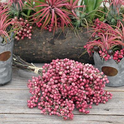 Deko Pfefferbeeren rosa im Bund (12-15 Stiele) für die Deko im Shabby Stil