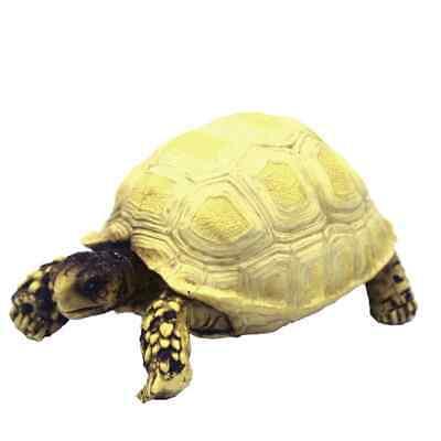 Hobby Turtle 3 - 10x6x5cm Schildkröte für Terrarium Deko Zubehör Schildkröten ()