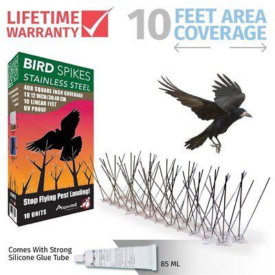 Aspectek Stainless Steel Bird Spikes 10 Feet (3 Metre), Bird Deterrent Kit With