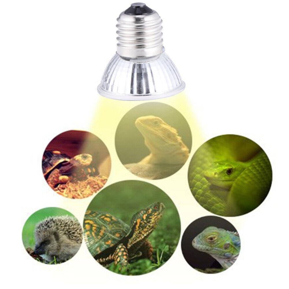 Lampadina lampada faretto spot  UVA+UVB 3.0 25W.rettili anfibi tartarughe