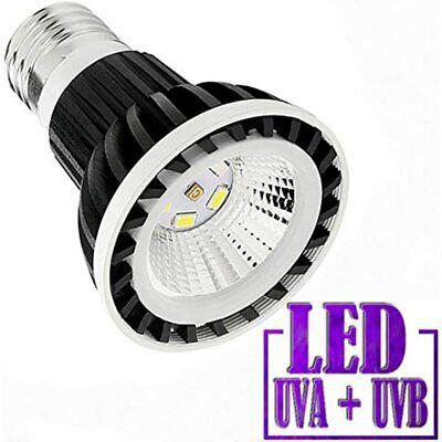 Full Spectrum LED Sun Lamp/Bulb/Light Reptile Amphibian Turtle Use (4W LAMP)