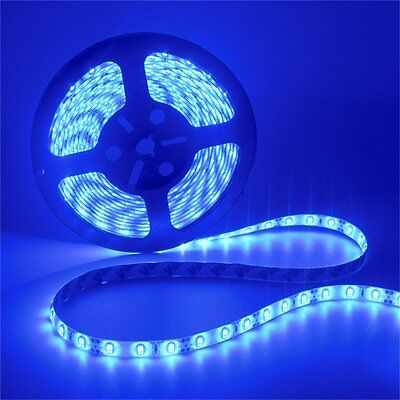 (12V 5M Blue 5630 LED Light Flexible Strip Party Bar Living Room Decoration 72W)