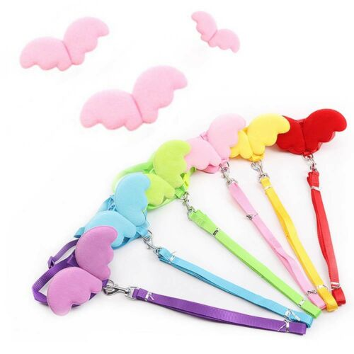 Cute Angel Pet Dog Leashes and Collars Set Puppy Leads for Small Dogs Cat#
