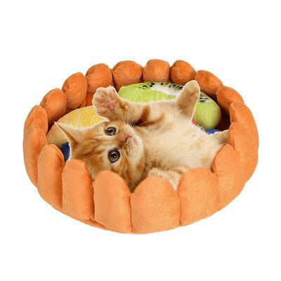 Pet Dog Cat  Bed Cushion House Mat Kennel Doggy Soft Puppy Fruit Tart Basket GB