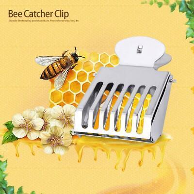 1 Pcs Metal Queen Bee Catcher Clip Cage Catching Tool Beekeeping Equipment Steel